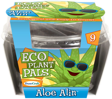 Aloe Alin picture