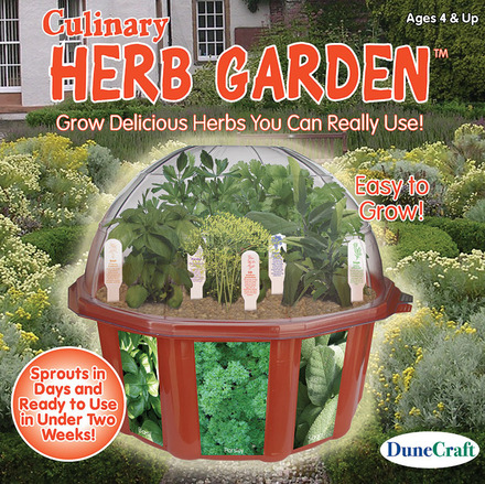 Culinary Herb Garden picture