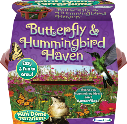 Butterfly & Hummingbird Haven picture