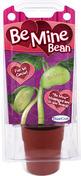 Be Mine Bean