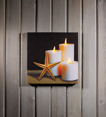 LIGHTED STARFISH CANVAS