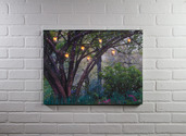 LIGHTED ENCHANTED WOODS CANVAS