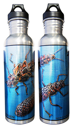 Water Bottle - Aluminum - Udesen's Stoneflies picture