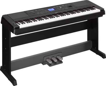 DGX-660 Portable Grand Piano picture