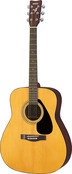 F310P Acoustic Guitar