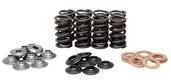 "Racing Spring Kit, Titanium, 0.405"" Lift, Suzuki®, SV™ 650, 1999-2009"