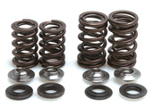 "Racing Spring Kit, Titanium, 0.440"" Lift, Honda®, TRX™ 450R/ER, 2006-2014"