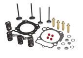 """Cylinder Head Service Kit, 0.465"""" Lift, Honda®, XR™ 650L, 1993-2018"""