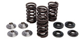 "Racing Spring Kit, Titanium, 0.440"" Lift, Husqvarna®, Various 450-510cc, 2006-2008"