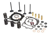 "Cylinder Head Service Kit, 0.435"" Lift, KTM®, 400cc-560cc, 2000-2009 (95mm Bore)"