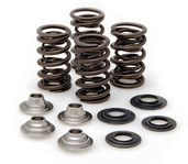 "Racing Spring Kit, Titanium, 0.415"" Lift, Kawasaki®, KX™ 450F, 2009-2016"