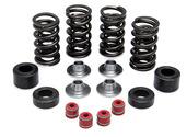 "Racing Spring Kit, Titanium, 0.385"" Lift, Honda®, CRF™ 250R, 2010-2015"