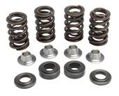 """Racing Spring Kit, Titanium, 0.450"""" Lift, Various Yamaha® Applications"""