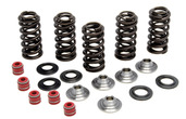 "Racing Spring Kit, Titanium, 0.380"" Lift, Yamaha®, WR™/ YZ™ 250F, 2001-2013"