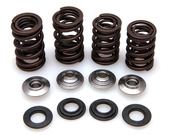 "Racing Spring Kit, Titanium, 0.440"" Lift, Honda®, CRF™ 450R, 2002-2008"