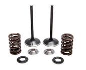 "Intake Only Spring Kit, Titanium, 0.440"" Lift, Honda®, TRX™ 450R / ER, 2006-2014"