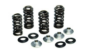 "Racing Spring Kit, Titanium, 0.395"" Lift, Yamaha®, WR™ / YZ™ 250F, 2014-2018"