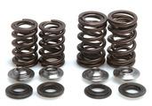 "Racing Spring Kit, Titanium, 0.440"" Lift, Honda®, CRF™ 450X, 2005-2017"