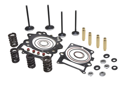 """Cylinder Head Service Kit, 0.480"""" Lift, Yamaha®, Various 700's, 2006-2019 picture"""