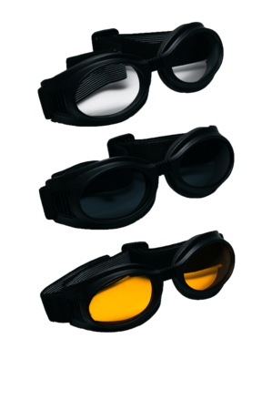 Vega Clear I-Gear Goggle picture