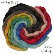 Three Feet of Sheep
