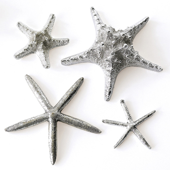 Sea Stars Set of 4 Silver Plated Knobby & Finger Starfish picture