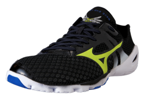 Mizuno Men's Wave EVO Levitas picture