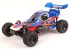 FF036, Flash Body-Buggy picture