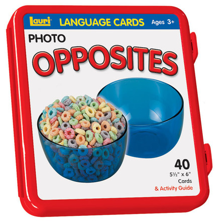 Opposites Language Cards picture