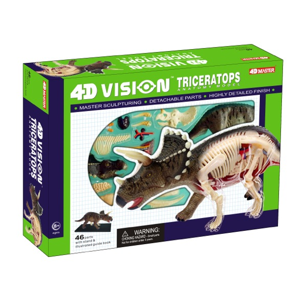 4D Vision Triceratops Anatomy Model | TEDCO Toys ®