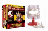 EIN-O's Teeth Box Kit