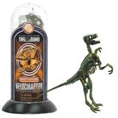 Test-Tube Dino Skeletons Velociraptor