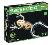 4D Full Skeleton Frog Anatomy Model