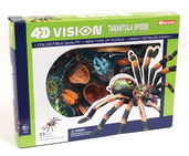 4D Vision Tarantula Spider Anatomy Model