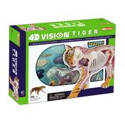 4D Vision Tiger Anatomy