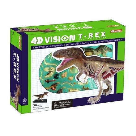 4D Vision T-Rex Anatomy picture