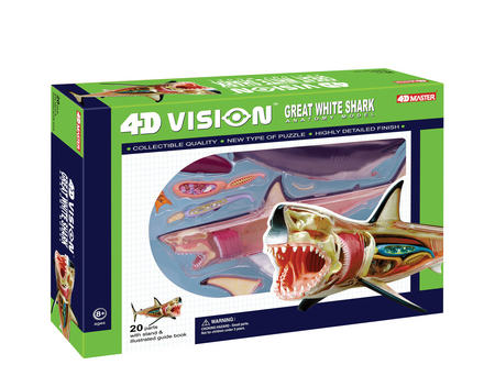 4D Vision Great White Shark Anatomy Model picture