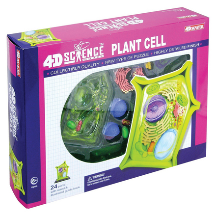 4D Science Plant Cell Model picture