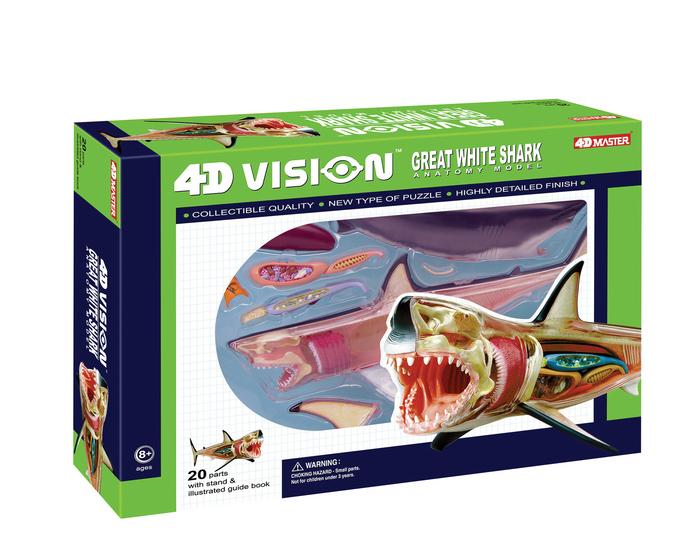 4d Vision Great White Shark Anatomy Model Tedco Toys