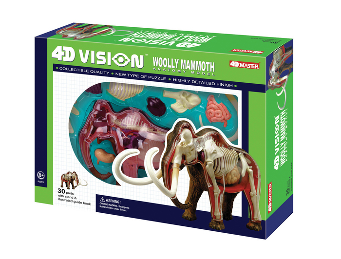 4D Vision Wolly Mammouth Anatomy Model | TEDCO Toys ®