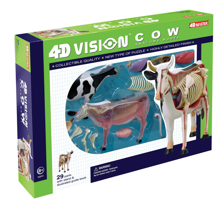 4D Vision Cow Anatomy Model | TEDCO Toys ®