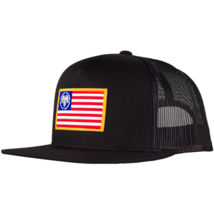 USA Eagle Patch picture