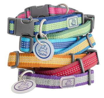 MTN Reflective Collar picture