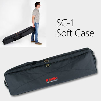 SC-1 Soft Carry Case picture