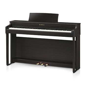 CN29 Premium Rosewood Digital Piano picture