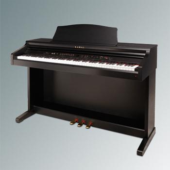CE220 Digital Piano picture