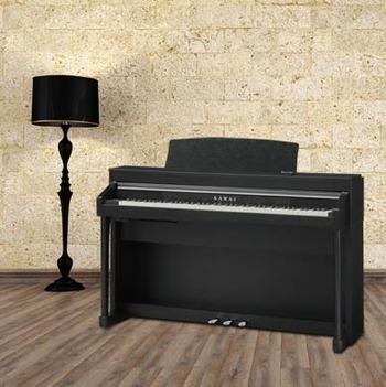 CA67 Premium Satin Black picture