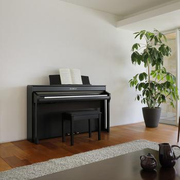 CA98 Premium Rosewood picture