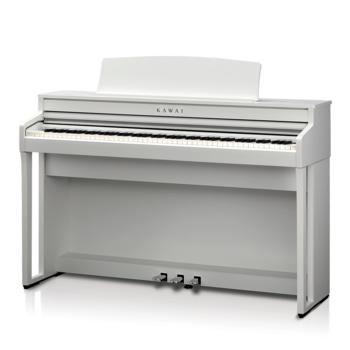 CA49 Premium Satin White picture