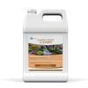 Sludge & Filter Cleaner (Liquid) - 1 gal